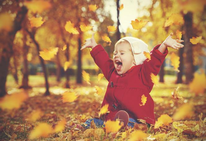 Pani jesień liściem malowana. Konkurs